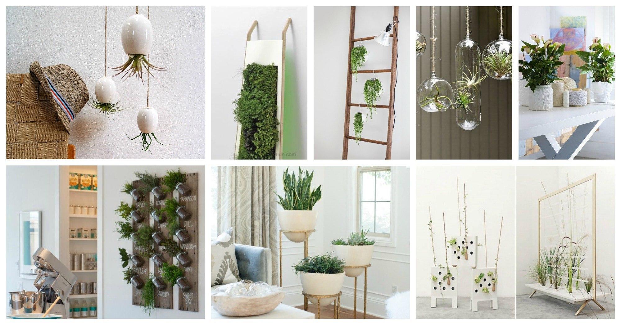 Fabulous Ways To Display Your Indoor Plants