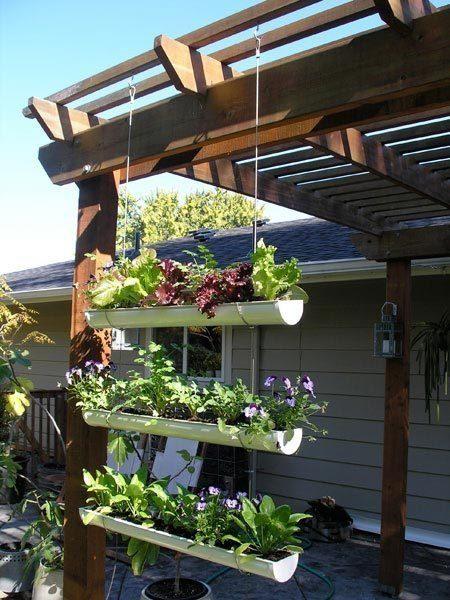 garden idea1