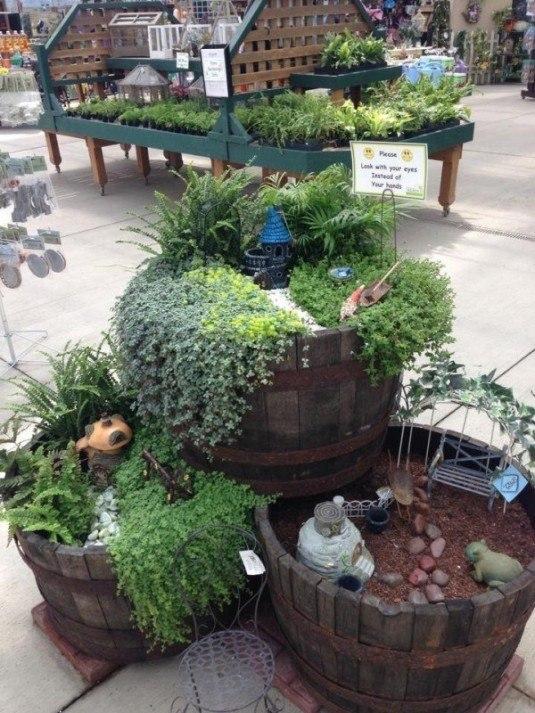 mini garden3