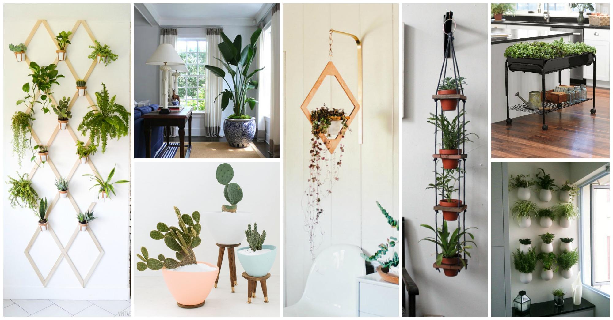 17 Indoor Gardens That Will Blow Your Mind