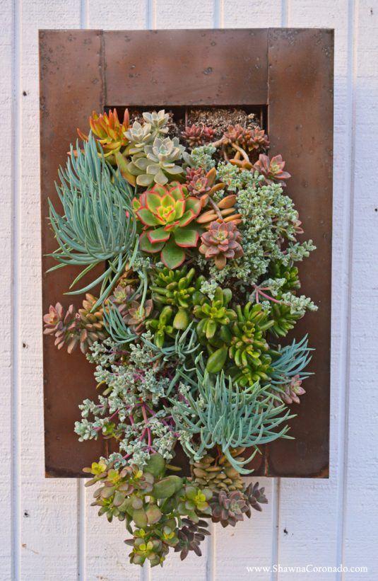 Succulent Living Wall Garden © Shawna Coronado