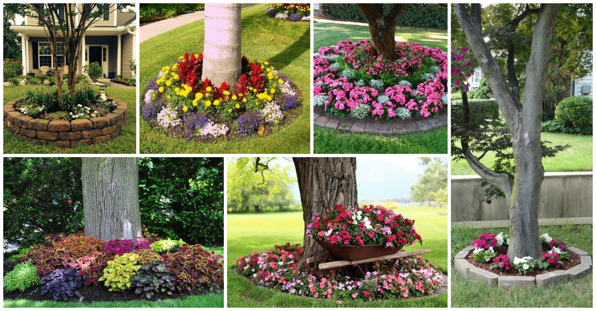 Clever Tips Of How To Landscape Around Trees