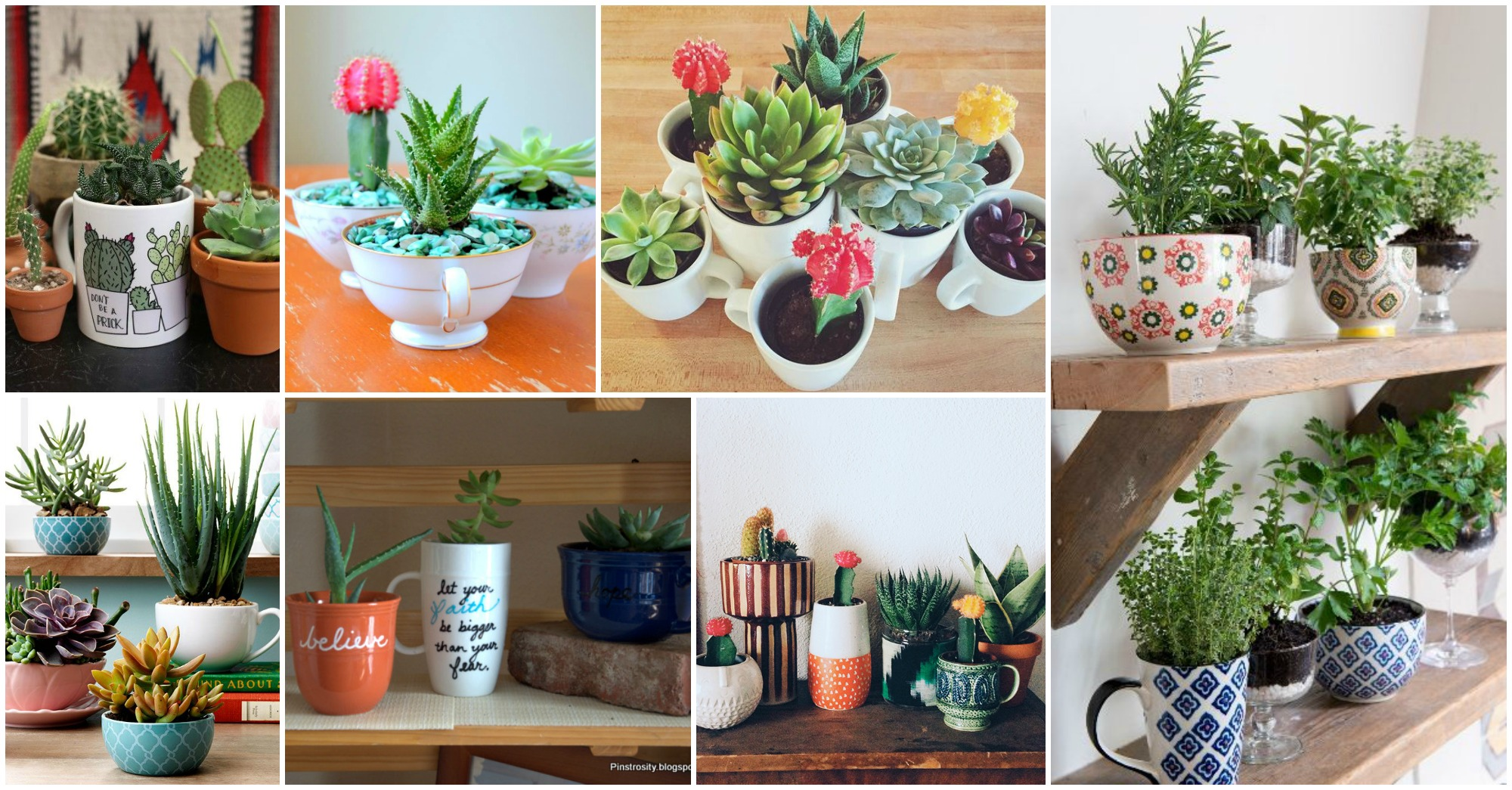 12 Astonishing Tea Cup and Coffee Mug Gardens