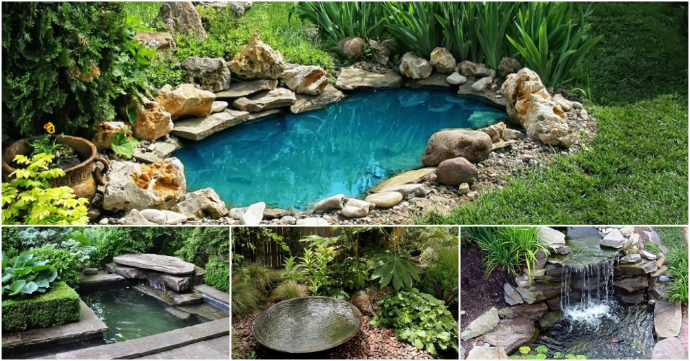 Easy DIY Garden Ponds That You Can Make Right Now