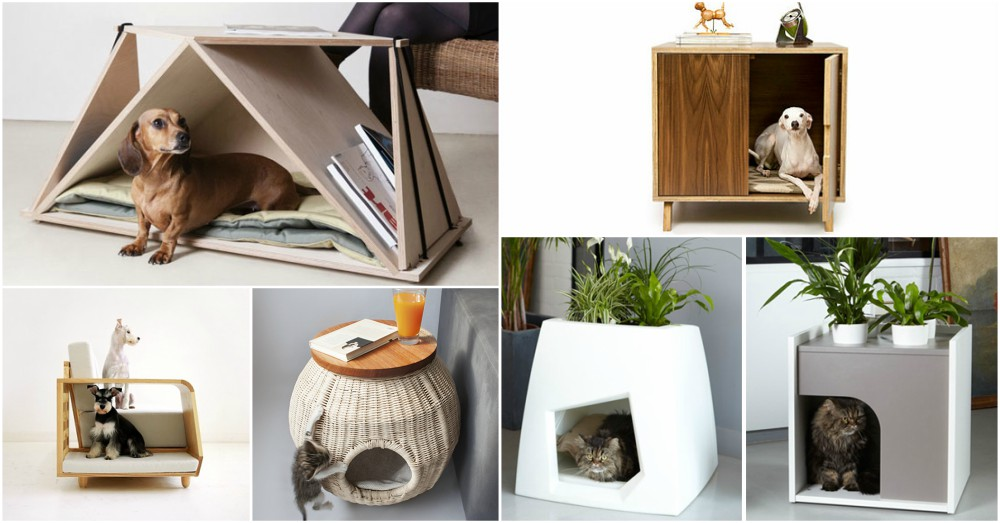 Make your Pet Happy With These Smart Solutions For Small Homes