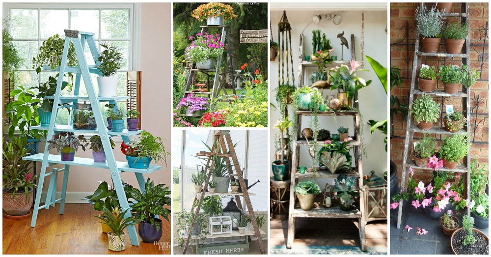 10 Impressive Ideas to Make Your Own Wooden Ladder Garden