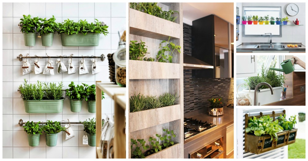 Quick Guide On How To Plant Herbs Indoor That You Can Use As Ingredients