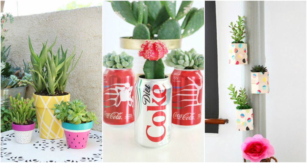 3 Awesome Ideas For Decorating Your Room With Succulents+Picture Tutorials