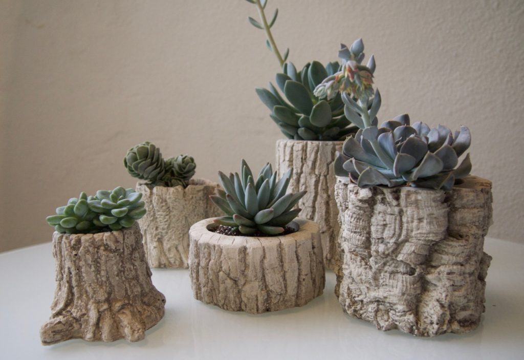 Diy Log Succulent Planter Sounds Like Excellent Idea