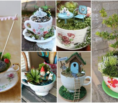 Tiny Teacup Garden Ideas  That You Can Make Right Now