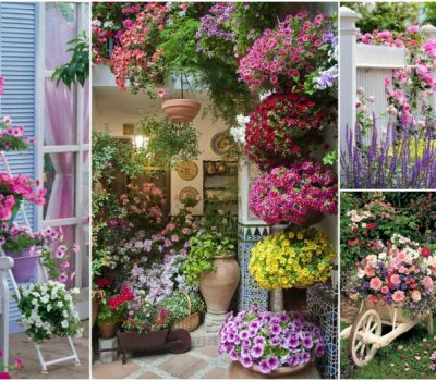 Fascinating Potted Flower Decor Ideas That Will Make Everyone Jealous