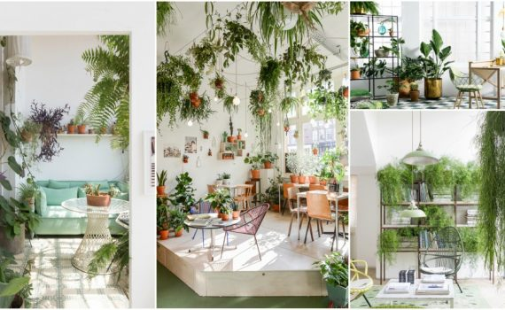 Bring The Nature Inside With Your Own Indoor Green Jungle