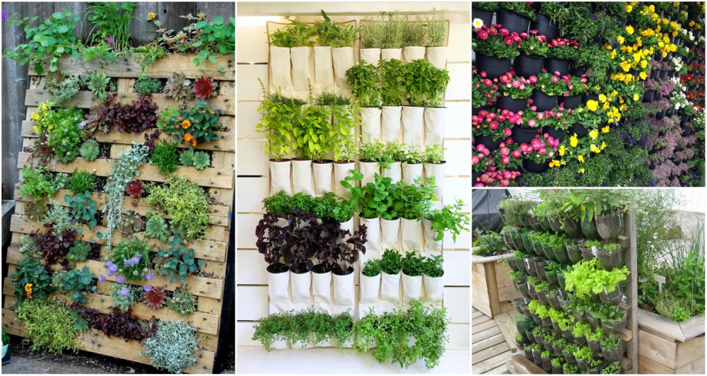 Top 10 DIY Vertical Garden Ideas That You Will Find Helpful