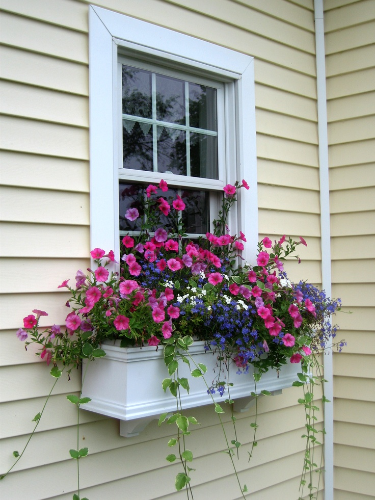 Window flower box ideas that will inspire you to make your own for Build your own window