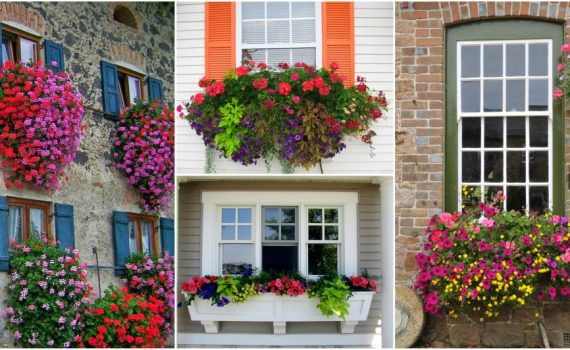 Window Flower Box Ideas That Will Inspire You To Make Your Own