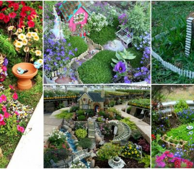 Small Fairy Garden Tips That Will Bring Some Magic In Your Garden