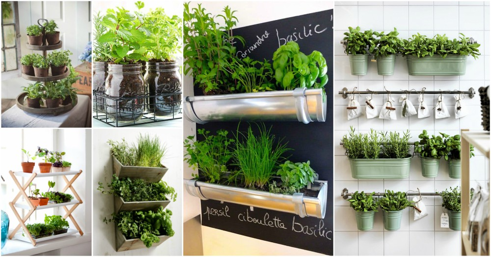 The Ultimate Guide On Indoor Herb Garden For Small Kitchens