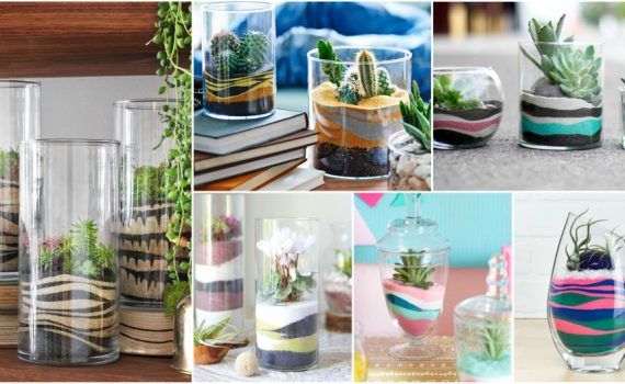Easy To Make DIY Sand Terrarium That Will Bring Fun In Your Home