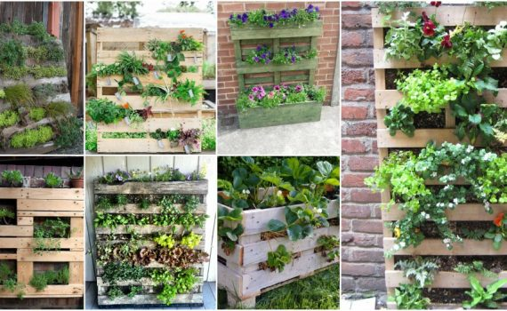 The Easiest Vertical Garden Made With Pallets! See How To Make It