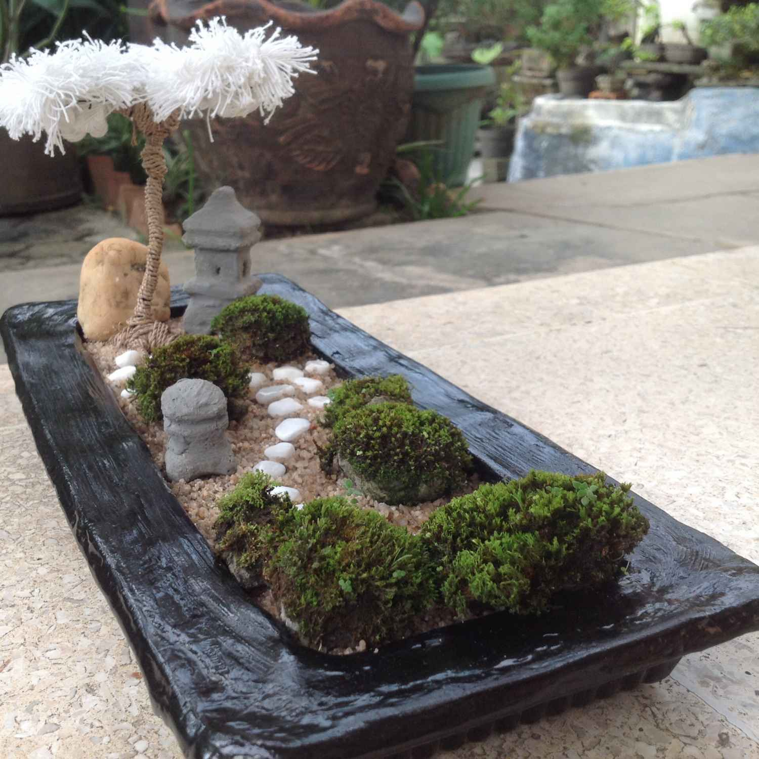 Mini Zen Garden Ideas To Bring Tranquility In Your Home