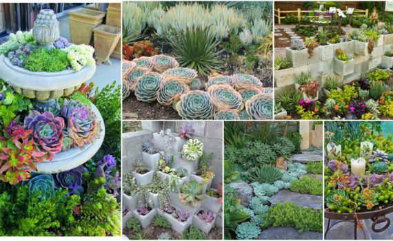 Garden Ideas And Tips To Grow Them Outdoors