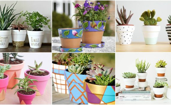 Cute Pot Decor Ideas To Make Them Look Outstanding
